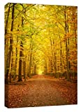 Pathway In The Autumn Forest + A1 Single Panel - Size 52cm x 77cm - Canvas Artwork Art Picture, Completely Ready to Hang for Easy Hanging, All Hanging Fixings Supplied, UK Company