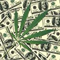 Sheet of a Hemp. Background of Money - Peel and Stick Wall Decal by Wallmonkeys