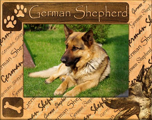 German Shepherd: Engraved Alderwood Picture Frame. Available in four sizes.