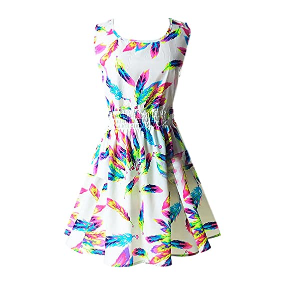 Hee Grand Women's Casual Summer Fit and Flare Floral Sleeveless Dress Chinese Feather