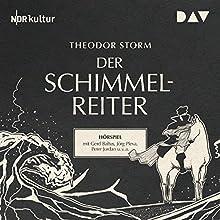 Der Schimmelreiter Hörspiel von Theodor Storm Gesprochen von: Gerd Baltus, Jörg Pleva, Peter Jordan