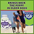 #1 BEST GLUCOSAMINE Hip & Joint Supplement for Dogs 120 count Natural chewable supplement with Glucosamine Chondroitin MSM Sulfate Vitamin C Tasty chews your dog will love 90 Day Customer Satisfaction Guarantee. SPECIAL OFFER for Fall 2015 buy 2 get 10% O