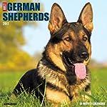 Just German Shepherds 2017 Wall Calendar