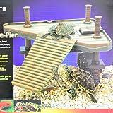 Aquarium Pet Plate-forme pour aquarium de tortues et grenouilles de taille moyenne