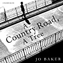 A Country Road, a Tree Audiobook by Jo Baker Narrated by David Rintoul
