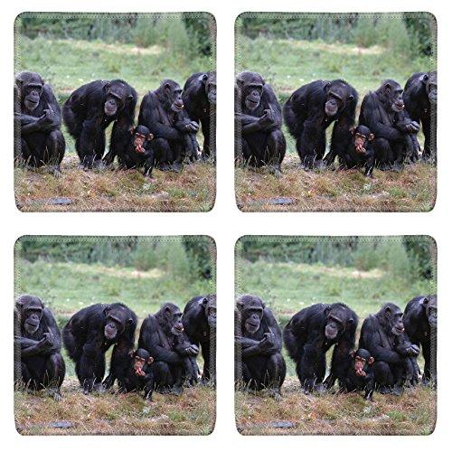 Luxlady Square Coasters 4 Pieces per order When Monkey s Go Bad IMAGE ID 221188