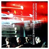 Misery Loves Co.: Your Vision Was Never Mine To Share [CD]