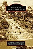 Avondale and Chicago's Polish Village (Images of America (Arcadia Publishing))