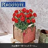 母の日 フラワーギフト カーネーション 鉢「複色赤系」日比谷花壇オリジナルバッグ入り