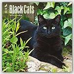 Black Cats 2016 Square 12x12 Wall Cal...