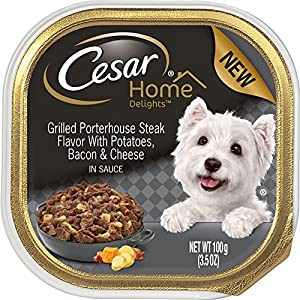 Cesar Home Delights Grilled Porterhouse Steak Potatoes, Bacon & Cheese Wet Dog Food (24 Pack), 1