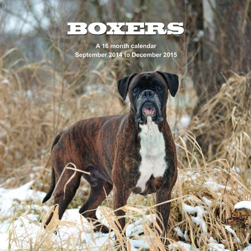 Boxers Calendar - 2015 Wall calendars - Dog Calendars - Monthly Wall Calendar by Magnum
