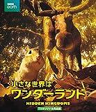 小さな世界はワンダーランド TVオリジナル完全版 [Blu-ray]