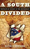 img - for A South Divided: Portraits of Dissent in the Confederacy book / textbook / text book