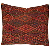 Laura Luna Textiles LL11-202 Chichi Pillow, 20-Inch by 20-Inch