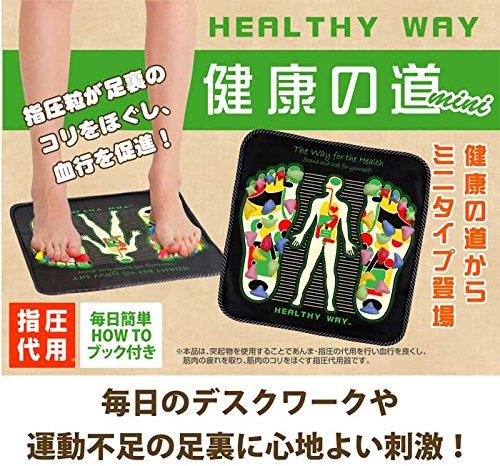 ヘルシーウェイTM 健康の道 mini
