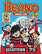 Beano Annual 2014 (Annuals 2014)