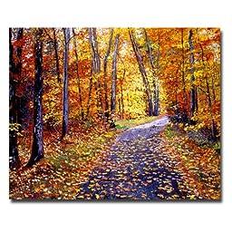 Trademark Fine Art Leaf Covered Road by David Lloyd Glover Canvas Wall Art, 26x32-Inch