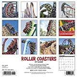 Roller Coasters 2017 Wall Calendar