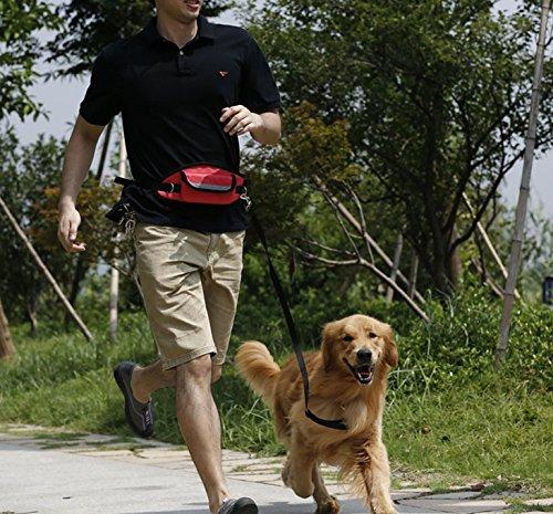 Guinzaglio Cane, PETBABA 64 - 120cm / 2 - 4FT Lunghezza Mani Libere Riflettenti Regolabile Peso Leggero Jogging Cammina Guinzaglio con Marsupio Nero