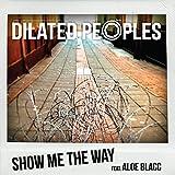 Show Me The Way (feat. Aloe Blacc) [Explicit]