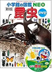 DVD�� ���� ���� (���شۤο� NEO)