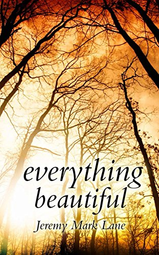 Book: Everything Beautiful - And Other Stories by Jeremy Mark Lane