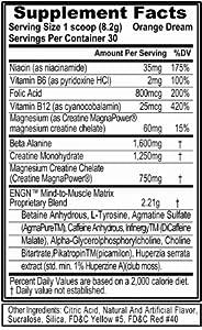 Evlution Nutrition, ENGN Pre Workout, 30 Serving