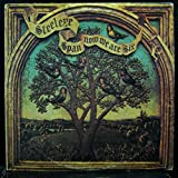 STEELEYE SPAN NOW WE ARE SIX vinyl record