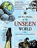 img - for Encyclopedia of the Unseen World: The Ultimate Guide to Apparitions, Death Bed Visions, Mediums, Shadow People, Wandering Spirits, and Much, Much More book / textbook / text book