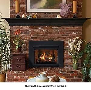Direct Vent Fireplace Insert Dv35in33lp Liquid Propane Kitchen Home
