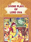 Divine Plays of Lord Shiva