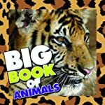 Big Book of Animals: Children's Book...