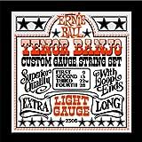 Ernie Ball 2306 Cordes pour Banjo Medium Light (9-13-22w-28)