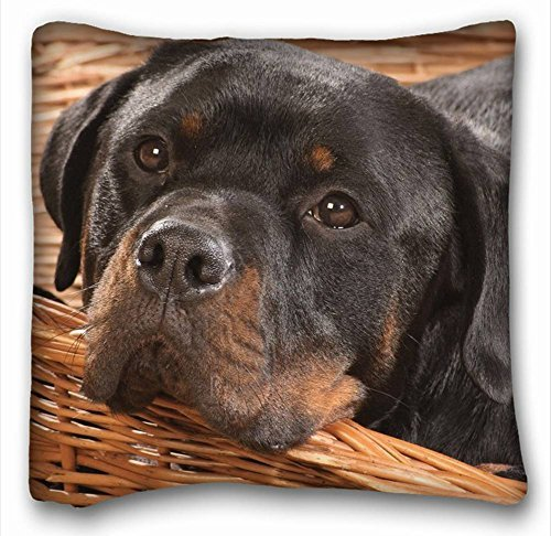 Rottweiler Square Throw Pillow Case