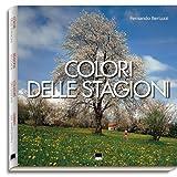 img - for Belluno. La provincia delle Dolomiti. Ediz. italiana e inglese book / textbook / text book