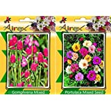Airex Gomphrena Mixed & Portulaca Mixed Flower Seeds ( Pack Of 25 Seeds Per Packet)