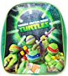 Teenage Mutant Ninja Turtles Children's Mini Backpack with The Pose Design, Green BIO-BP300812TNT