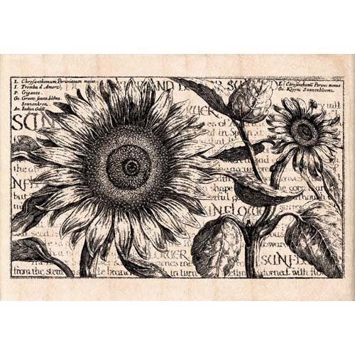 Inkadinkado Rubber Stamp - Sunflower Collage