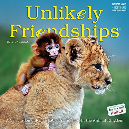 Unlikely Friendships Wall Calendar 2016 (2016 Calendar)
