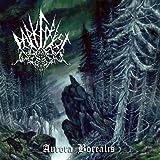Aurora Borealis by Dark Forest (2012-05-04)