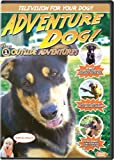 Pet Media Adventure Dog DVD Volume 1: Outside Adventures