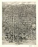 Image of GIANT Wall Sticker of: Panoramic map of historic Tallahassee 1926.