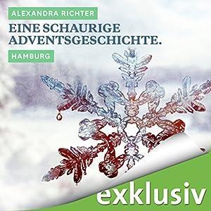 Eine schaurige Adventsgeschichte. Hamburg (Winterkrimi) Hörbuch