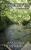 White River: A Cassie Nash Novel (Pruitt County Mysteries Book 2)