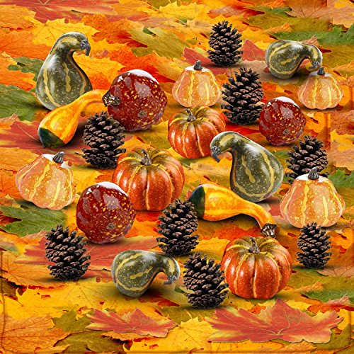 Thanksgiving Home Decoration Set of 250 Mini Maple Leaves + a Mix of 12 Artificial Mini Harvest Pumpkins and Gourds + 6 Pine Cones. Fall Autumn Wedding Décor & Parties