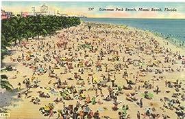 1950s Vintage Postcard Lummus Park Beach - Miami Beach Florida