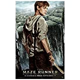 Poster4U New The Maze Runner Thomas Brodie Newt Poster (Print, 12 inch x 18 inch, HD060)