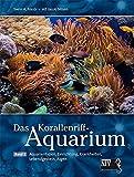 Das Korallenriff-Aquarium