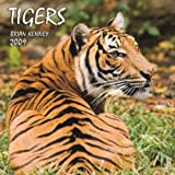 Tigers 2009 Square Wall Calendarby BrownTrout Publishers Ltd